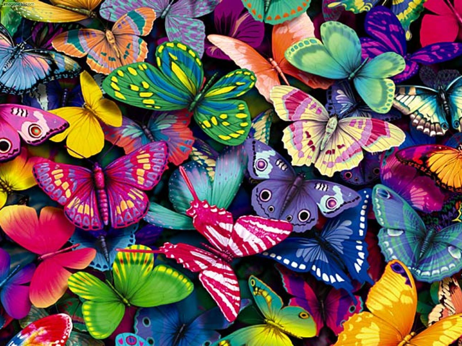 Excepcional Para Colorear Flores Y Mariposas Duras Embellecimiento ...