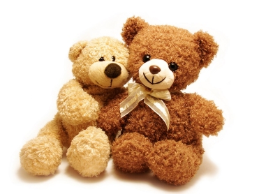 two teddy-bears sitting with their arms around each other isolated in white